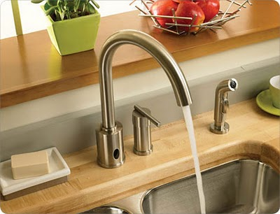 Danze Hands Free Kitchen Faucet With Spray