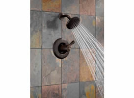 Delta Leland Tempassure 17T Series Shower Trim