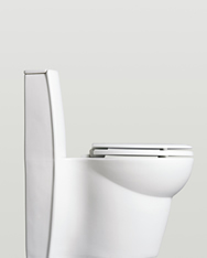 Side of Kohler Saile Toilet