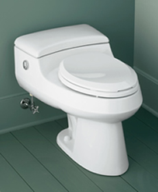 Kohler San Raphael Comfort Height Elongated One Piece Toilet