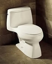 Kohler Santa Rosa Comfort Height One Piece Compact Elongated Toilet
