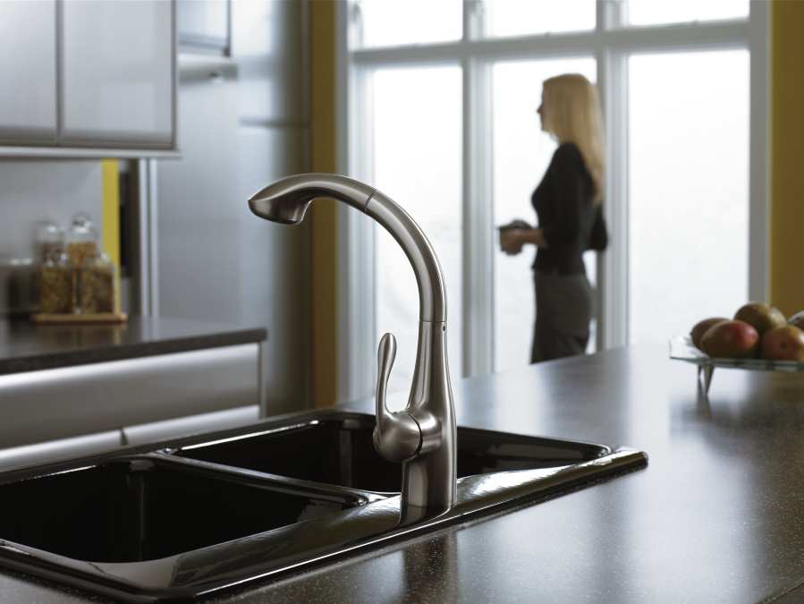Hansgrohe 06461860 Allegro Pull Out Kitchen Faucet