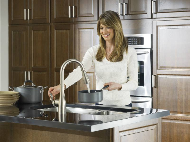 Kleo Single Handle Pulldown Kitchen Faucet