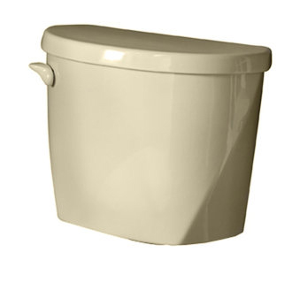 American Standard 4061.016.021 Evolution 2 Toilet Tank Only - Bone