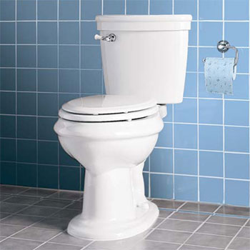 American Standard 2474.016.020 the Standard Collection Right Height Elongated Toilet - White