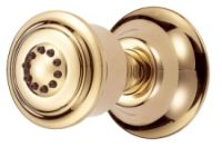 Danze D460155PBV Wall Mount Body Spray - Polished Brass