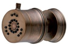 Danze D460245RBD South Sea Two Function Wall Mount Body Spray - Distressed Bronze