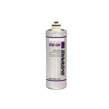 Everpure EV9618-31 2CB-GW Filtration Cartridge