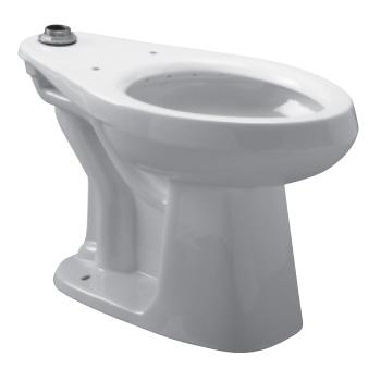Zurn Z5660 Elongated Floor Mounted Flush Valve Toilet