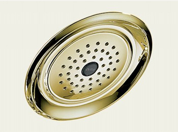 Delta RP48686-PB Lockwood Touch-Clean Rain Can Showerhead - Polished Brass