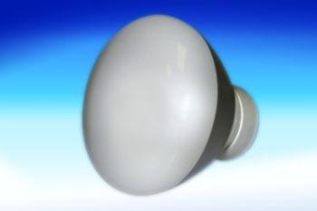 Fantech PBB14 14 Watt Fluorescent Bulb