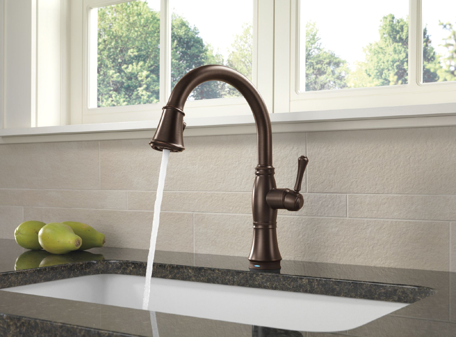 Delta Kitchen Faucet Bronze delta 9197t-rb-dst cassidy single handle pull down kitchen faucet