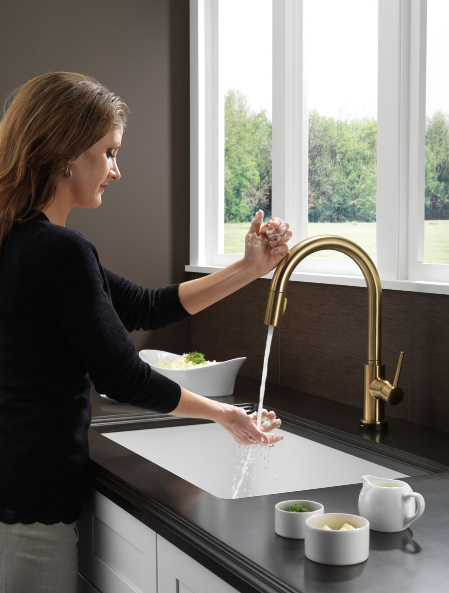 Delta 9159T-CZ-DST Trinsic Single Handle Pull Down Kitchen Faucet ...