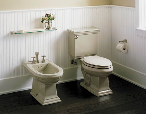 Bidet toilets customize your toilet with a bidet - Picture of bathroom ...