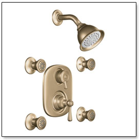 Moen Kingsley Moentrol Vertical Spa