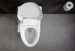 toilet seats and washlets